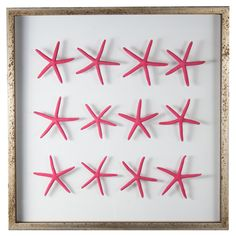 Sea Star Framed Wall Art in Island Pink