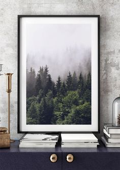 Poster med Fotografi av Dimma och Skog | Billiga Posters Online | Archiveseven.com