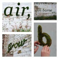 grass words