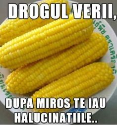 #DrogulVerii Jokes, Humor, My Favorite Things, Funny, Romania, Beans, Victoria, Comics, Abstract