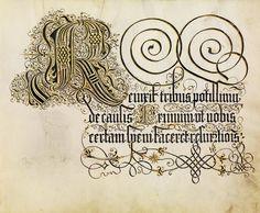 An album of 16th century calligraphy. For background/links, please see: bibliodyssey.blogspot.com/2014/11/schonschreibmeister.html