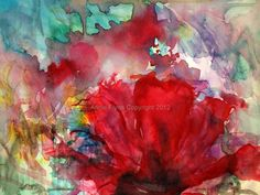 wild red flowers