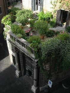 Rooftop garden.....Rome- This is so beautiful and has ideas for any courtyard.