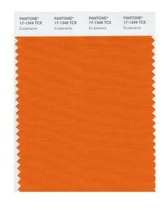 Pantone 17-1452 TCX Smart Color Swatch Card, Koi - Amazon.com Pantone Swatches, Color Swatches, Fabric Swatches, Orange Peel, Orange Color, Colour, Burnt Orange, Orange Wedding Invitations, Red Space