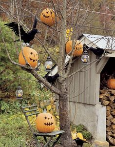 Spooktacular Tree~ Bare-limbed trees provide the perfect ghostly perch for jack-o'-lanterns, candle lanterns, and a flock of faux black crows. Funkins (fake pumpkins) are especially good for this project since they are lighter. And as always... I would add some spider webs!