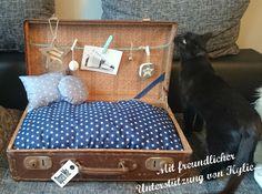 Während ich mal wieder so im Netz surfte, entdeckte ich ein upcycling (-> aus alt mach neu) von einem alten Koffer das mich sofort begeisterte! Jemand hat aus einem alten Koffer ein Körbchen für seinen Hund gemacht (Katzen mögen sie genauso, wie man auf dem Foto sieht ). Zu kaufen gibt es sowas nicht, also machte ich mich gleich …
