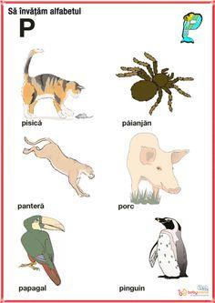 fise imagini reprezentative ale literelor din alfabet | Cu Alex la gradinita Kids Education, Alphabet, Homeschool, Letters, Logos, Animals, Bebe, Rome, Early Education
