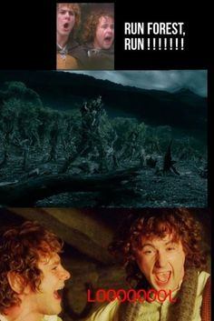 Merry Pippin Lord Of The Rings - LOL OHMYGOSH!!!:D