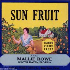 Winter Haven Florida Sun Fruit Orange Citrus Fruit Crate Label Art Print Old Florida, Vintage Florida, State Of Florida, Vintage Travel, Vintage Art, Vintage Food Labels, Orange Crate Labels, Winter Haven Florida, Vegetable Crates
