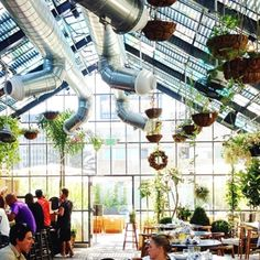 Justina's Top 10 Plantastic Places to Visit in L.A. - YP.com