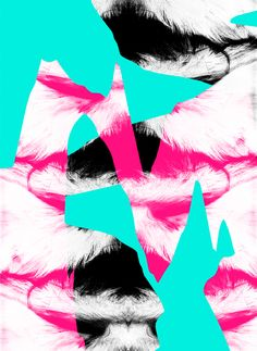 Sara Haraigue   Design Graphique inspiration