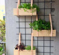 Small Balcony Decor, Balcony Plants, House Plants Decor, Balcony Garden, Home Wall Decor, Mini Plantas, Exterior Tiles, Balkon Design, Vintage Garden Decor