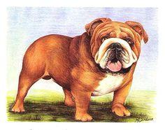 Who's Your Bulldog by MargaretRoseScribner on Etsy, $40.00