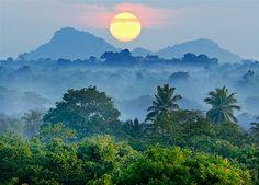 En magisk resa till Sri Lanka med både rundresa och ayurveda-klinik!