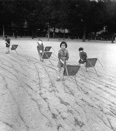 Bois de Boulogne Paris circa 1950  - Robert Doisneau