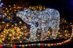 Die #Weihnachtszeit ist die Zeit der Lichter – wahre Kunstwerke von #Lichtinstallationen begegnen uns bei unseren abendlichen Streifzügen durch Straßen und Gassen. Ab zirka 16 Uhr können wir uns mit einbrechender Dunkelheit bereits auf Motivjagd begeben.