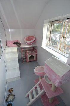 Outdoor Cats, Indoor Outdoor, Outdoor Play, Lapin Art, Bunny Room, Cat Hotel, Cat House Diy, Cat Bedroom, Cat Cages