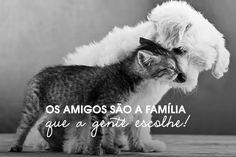 Os amigos são a família que a gente escolhe! #diadoamigo #amizade #amigos #fofuras