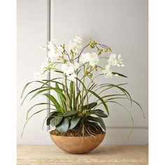 Faux Moth Orchid in Planter (24.690 RUB) ❤ liked on Polyvore featuring home, home decor, floral decor, flowers, multi colors, handmade home decor, phalaenopsis orchid arrangement, artificial flower stems, flower arrangement and artificial flower arrangement