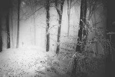 Memories Full Of Winter by Serban Bogdan on Art Limited
