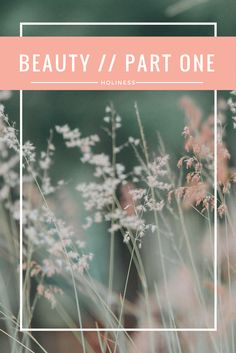 What does an unfading beauty look like? How is beauty tied to holiness?