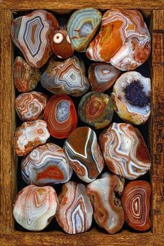 A community to share everything about crystals, gemstones, fossils, minerals and all crystalline gifts of the Earth. Minerals And Gemstones, Crystals Minerals, Rocks And Minerals, Stones And Crystals, Gem Stones, Lake Superior Agates, Rock Collection, Beautiful Rocks, Mineral Stone