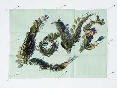 Cyanotype Lettering - Jill De Haan