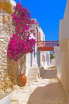 Discover Sifnos: in the Cyclades, one of the most beautiful islands in the Aegean is eager to reveal its secrets. Beautiful Islands, Beautiful World, Beautiful Places, Mykonos, Best Places To Travel, Places To Visit, Places Around The World, Around The Worlds, Greece Islands