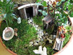 Miniature fairy garden designs creates tiny realistic landscapes!!