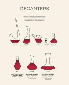 Choosing the correct Decanter for Wine types