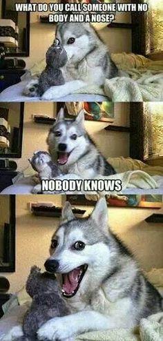 Haha that face!