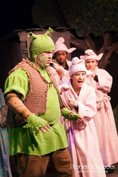 i hate these bathrobed pigs... but the shrek hat idea is actually cool with me. I'd rather see him with full sleeves and gloves. But I like the overall simplicity of this Shrek.