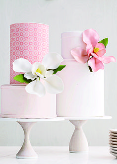 Chic party Cake