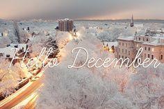 Aralık - December