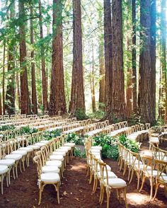 """9,169 Likes, 131 Comments - Wedding Chicks® (@weddingchicks) on Instagram: """"An outdoor venue with picture perfect chairs Full-service destination planner @lauriearons 