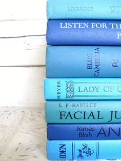 Blue Books Instant Library Collection by sorrythankyou79 on Etsy, $35.00