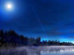 밤하늘과숲풍경
