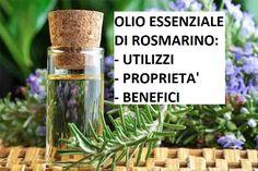 L' olio essenziale di rosmarino è un popolare olio noto per la sua vasta gamma di benefici per la salute.Ecco quali sono e come si assume Doterra, The Cure, Essential Oils, Medicine, Herbs, Health, Plants, Noto, Ayurveda