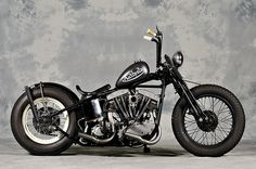 Harley Bober from Japan