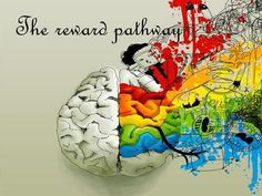 The reward pathway.  ensures beneficial behaviour  also called mesolimbic pathway  connected to:  ventral tegmental area  nucleus accumbens  prefrontal. Deco Wedding Cake, Nucleus Accumbens, Mental Health Center, Slide Images, Brain Science, Creative Writing Prompts, Gothic Horror, Infancy, Exercises