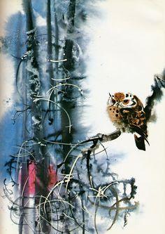 Mirko Hanák    Owl    From Animals We Love, Book 1, 1972