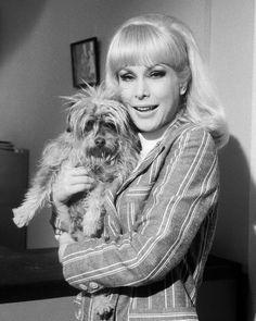 """I Dream of Jeannie"" Season 5 Episode ""Djinn Djinn the Pied Piper"" 1969-1970"