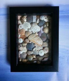 Reserved For Kate Beach Treasures Shadow Box Sea Shell