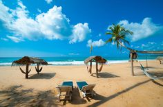 Searching For best Tours & Travel Agents in Sri Lanka? Merganser Holidays is a Travel Agent in Sri Lanka designed to offer you an extraordinary travel. Island Nations, Little Island, Paradise Island, Tour Operator, Sandy Beaches, Day Tours, Holiday Travel, Sri Lanka, Wonders Of The World