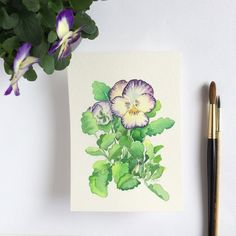 Pansy flower original watercolor painting inches by Zoya Makarova Arches Watercolor Paper, Watercolor And Ink, Watercolor Flowers, Watercolor Paintings, Watercolors, Winsor And Newton Watercolor, Or Mat, Plant Painting, Pansy Flower