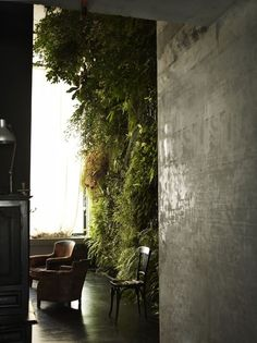 aaaahhh // leather armchairs, concrete floors, wall of plants