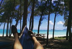 Missing out on fall, but I guess this place will do. #grandtrunk #sun #Hawaii #freedom