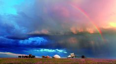 grasslands   内蒙古大草原,与浪漫无关