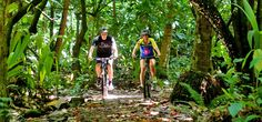Jungle Biking at Anse Chastanet