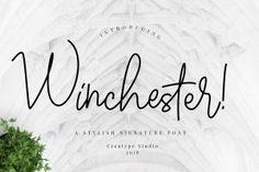 Winchester Signature Script | Pixelify | Best Free Fonts, Mockups, Templates and Vectors.